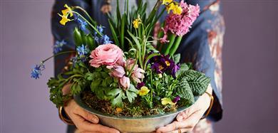 Forårets nyheder